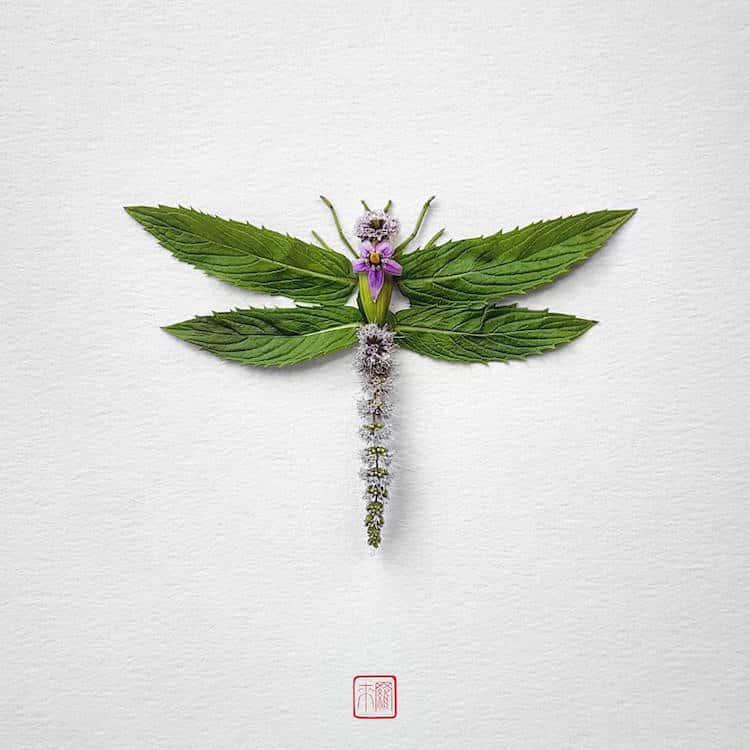 raku-inoue-insect-art-floral-arrangements-6