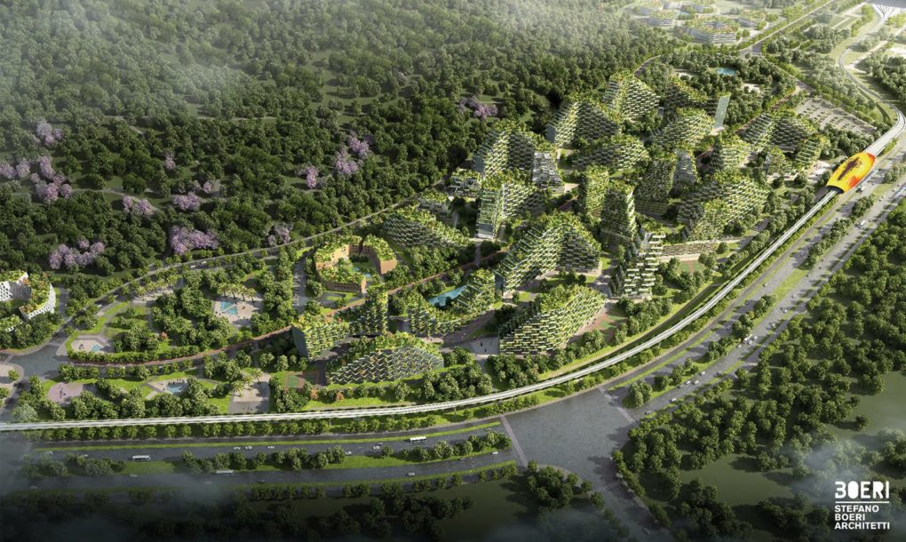 forest-city-6
